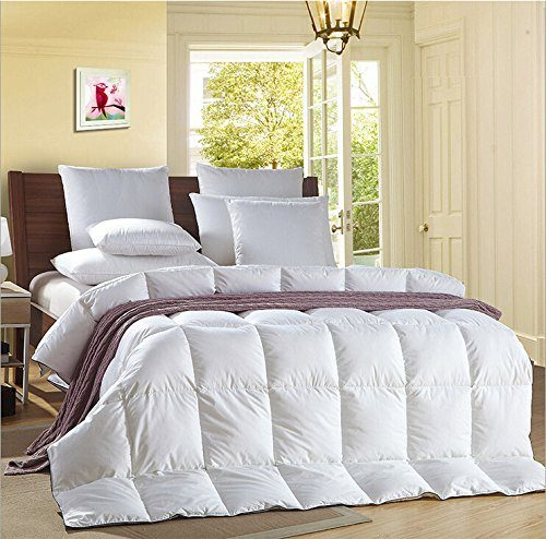 reviews of bed duvets