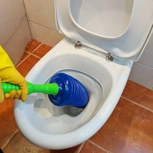 Luigi's Toilet Plunger Review